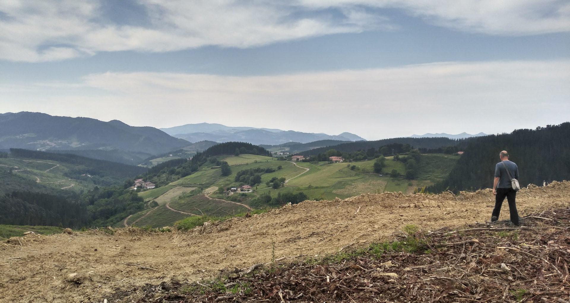 Foto del solar del proyecto Bai, basoa bebai